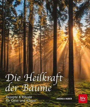 1376_HeilkraftBäume_260914.indd