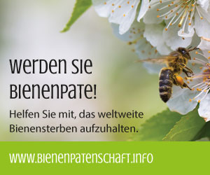 Bienenpatenschaft.info