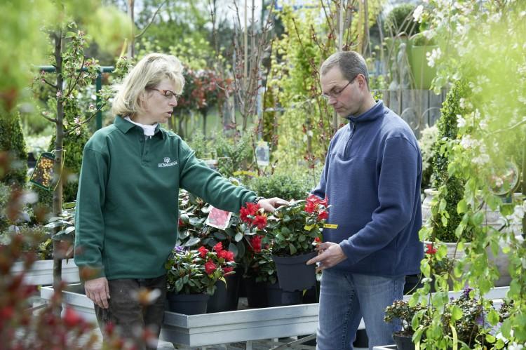Tipps zur Gehölzauswahl für den Garten und zur richtigen Pflanzung gibt es im Fachhandel. Foto: BdB.